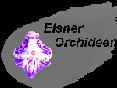 Elsner Orchideen-Logo